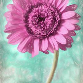 Soft Pink Gerbera Daisy  by Carol Japp