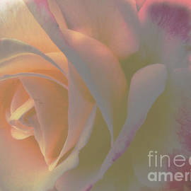 Soft Whisper  by Beverly Guilliams