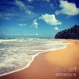 Solitude Beach by The Art of Alice Terrill