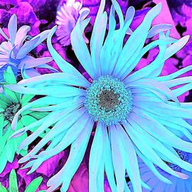 Something Blue by Cindy Greenstein