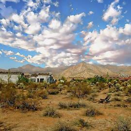 Sonoran Desert View by Anthony Dezenzio