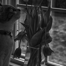 Sophie and Tulips by Ruth H Curtis