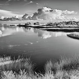 Sound Side Lagoon Outer Banks by Dan Carmichael