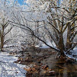 South Boulder Creek by Lorraine Baum