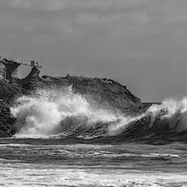 South Swell South Laguna Bw by Cliff Wassmann