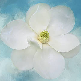 Southern Magnolia on Blue by Isabela and Skender Cocoli