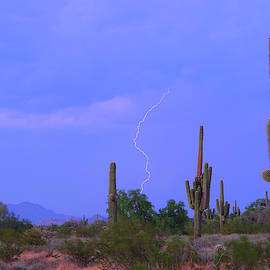 Southwest Sonoran Desert Lightning Strike by James BO Insogna
