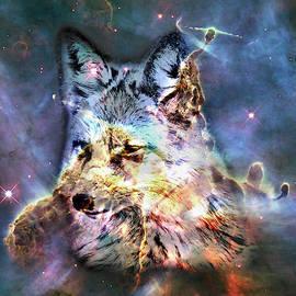 Grant Osborne - Space Fox no4