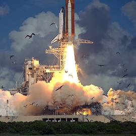 Space Shuttle  Launch With Flock Of Birds by Bradford Martin