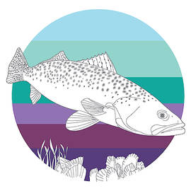 Speckled Trout On Oyster by Kevin Putman