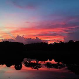 Spectacular sunset over a Florida Pond by Dimitris Sivyllis