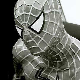 Spider-man by Shaun Higson