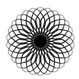 Spiral Black and White Graphic by Delynn Addams