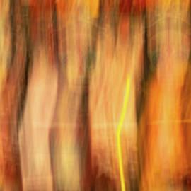 Spirits Abound by Robin Zygelman
