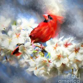 Spring Cardinal by Tina LeCour