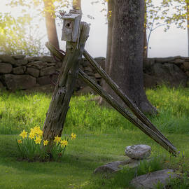 Spring In New England 2019 by Bill Wakeley