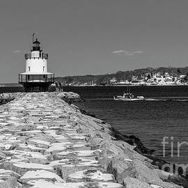 Spring Point Ledge by Alana Ranney