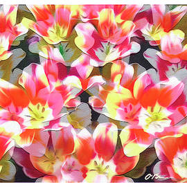 Spring Profusion by Claudia O'Brien