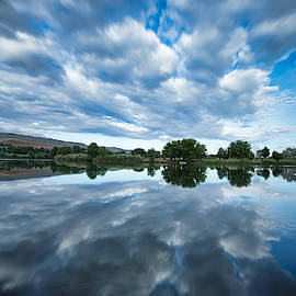 Spring reflections by Lynn Hopwood