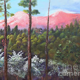 Springtime At Pink Knob - Large Canvas - Ellijay by Jan Dappen