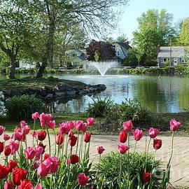Springtime by the Lake by Dora Sofia Caputo Photographic Design and Fine Art