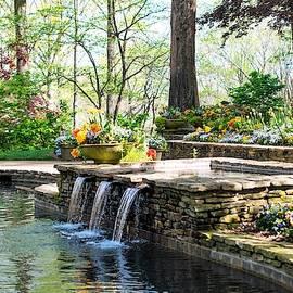 Springtime by the Pool by Mary Ann Artz
