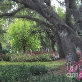 Springtime In The Park by Mary Lou Chmura