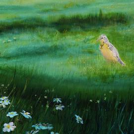 Springtime by Sunny Franson