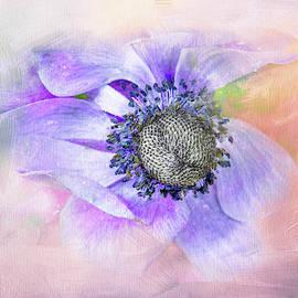 Springy Dahlia by Terry Davis