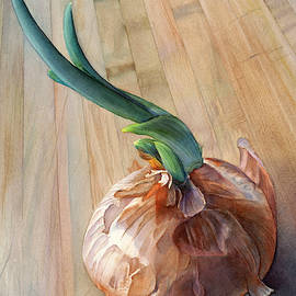 Sprouting Onion by Sandy Haight