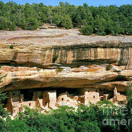 Spruce Tree House Ruin - Mesa Verde by Douglas Taylor