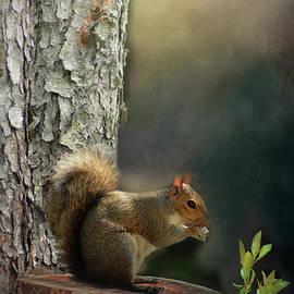 Squirrel on a Stump by Kathy Kelly