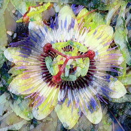 Stained Glass Passion Flower by Claudia O'Brien