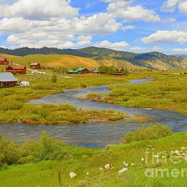 Stanley Idaho Trail To Idaho Adventure by Art Sandi