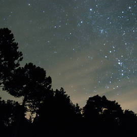 Guillermo Lizondo - Stars at night