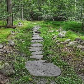 Stepping Stone Path - Kinnelon by Christopher Lotito