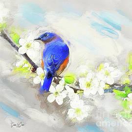 Still Bluebird by Tina LeCour