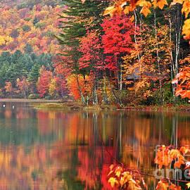 Stocker Pond New Hampshire II by Butch Lombardi