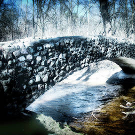 Stone Bridge Michigan by Evie Carrier