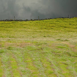 Storm In A Hay Field by Clive Beake