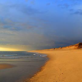 Storm Over Cape Cod - Coast Guard Beach by Dianne Cowen