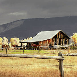 Stormy Autumn Day In Wyoming by Donna Kennedy