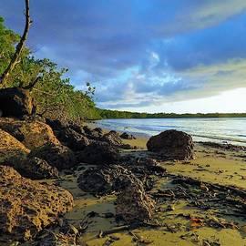 Joan Stratton - Stormy Sky Rocky Beach