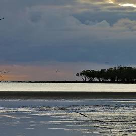 Stormy Sunset Beach With Birds flying Silhouette by Joan Stratton