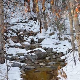 Glenn McCarthy Art and Photography - Strawberry Creek In Winter - Idyllwild