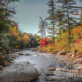 Stream in the White Mountains by Claudia M Photography
