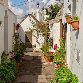 Street in Alberobello, Puglia by Patricia Hofmeester