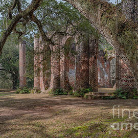Stretching Of Time - Old Sheldon Church Ruins by Dale Powell