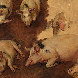 Study of six Pigs, 1900 by Anders Askevold