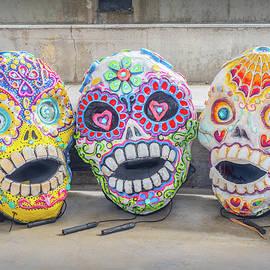 Sugar Skulls by Robin Zygelman